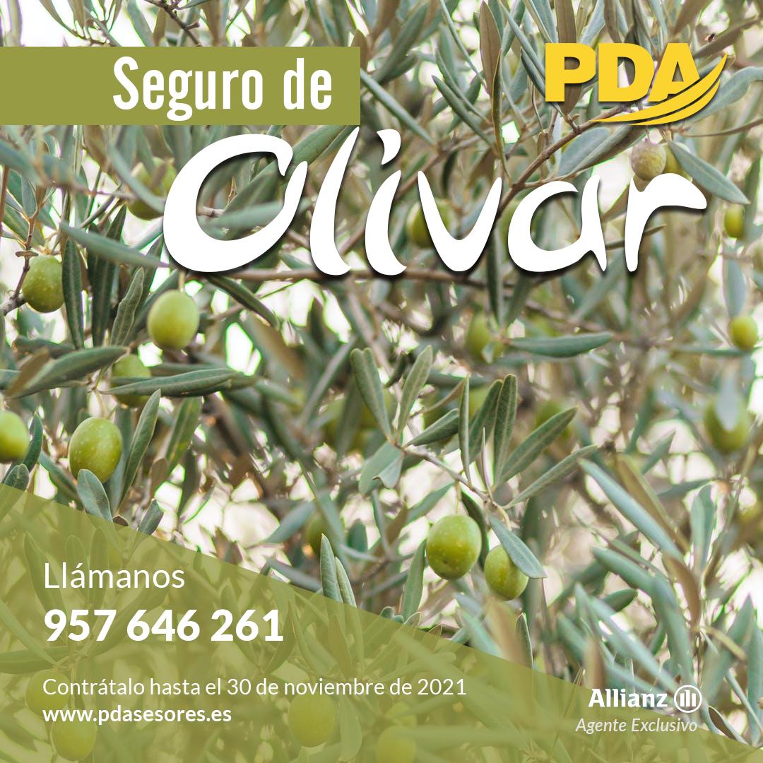 Seguro del olivar